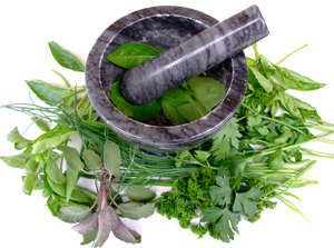 Mortar_and_Pestle_with_Herbs.jpg